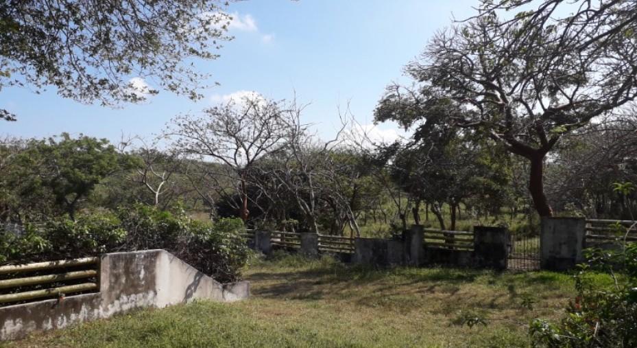 EXCELENTE TERRENO  EN ALVARADO