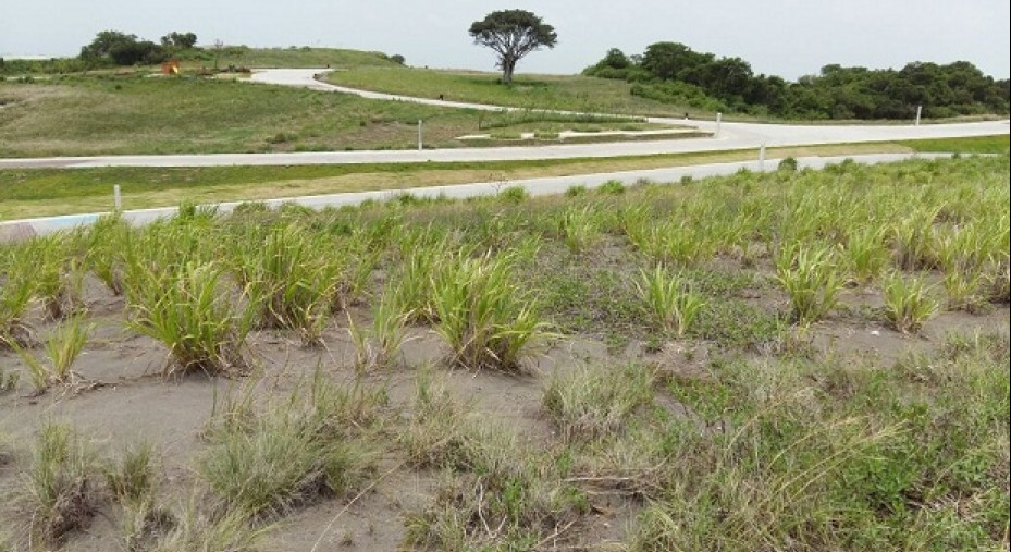 TERRENO QUE DA AL GREEN EN PUNTA TIBURON, VERACRUZ