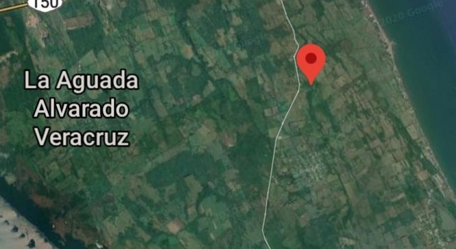 TERRENO 200 HECTAREAS ORILLA CARRETERA EN EL ZAPOTE VERACRUZ