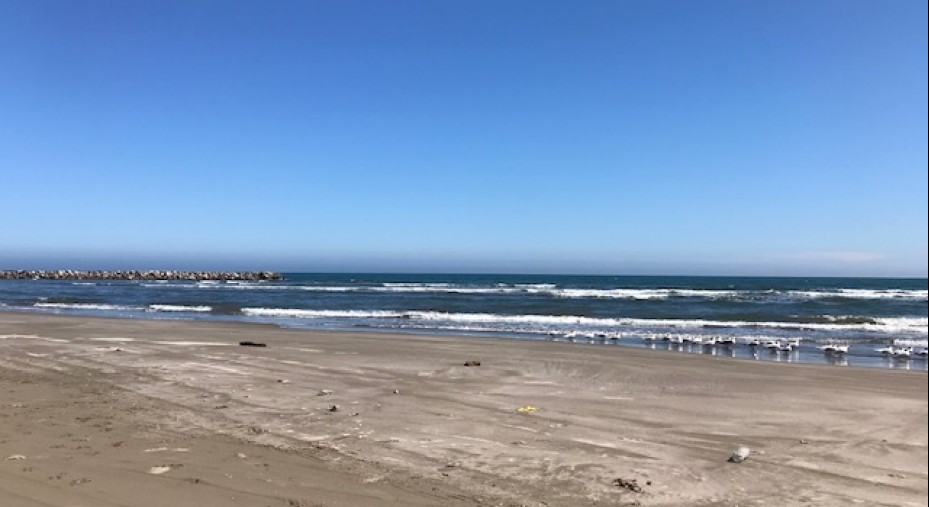 Terreno EN Playa EL Zapote A Unos Pasos DEL MAR Y A 20 MIN DE Veracruz