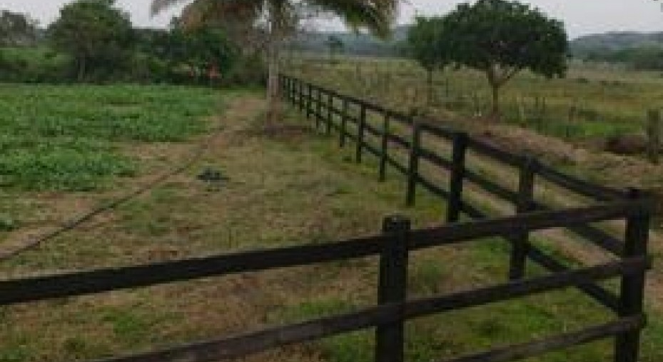 Terreno en Venta en El Zapote